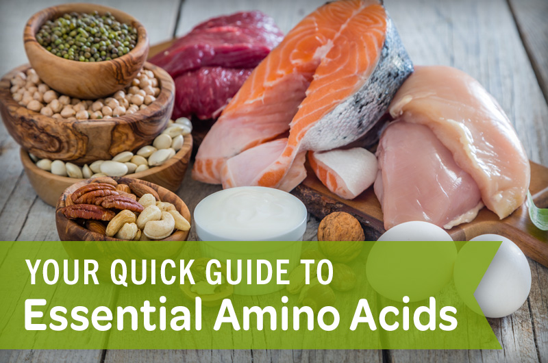 Your quick guide to essential amino acids eggs nuts seeds beans meat salmon chicken